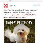 +1 For Purina: Personalized Messages on Social Media Turn Animal Lovers Into Potential Customers