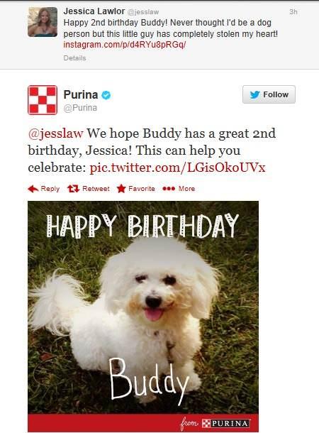 Happy birthday Buddy-Jessica Lawlor