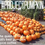 #ProjectPumpkin: The Quest To Find Fall's Best Pumpkin Spice Coffee