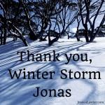 Thank You, Winter Storm Jonas